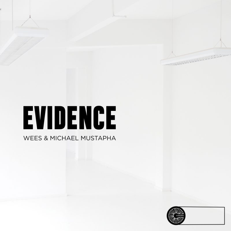 Wees Michael Mustapha Evidence